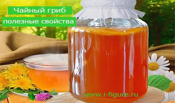 Как пользоваться чайным грибом в домашних условиях