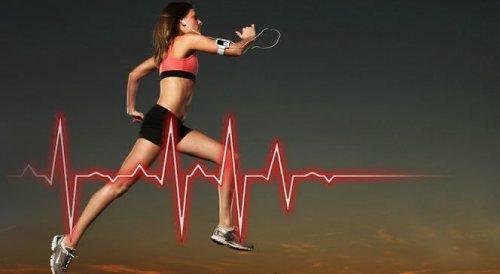 оптимальный пульс при кардиотренировках