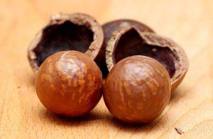 австралийский орех свойства