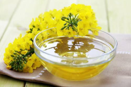 рапсовое масло для организма