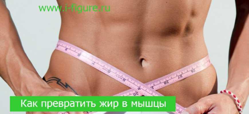 жир в мышцы
