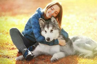 девушка и собака дружат