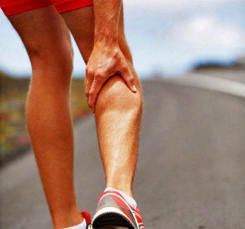 почему сводит судорогой мышцы ног