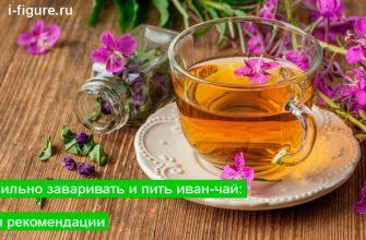 Как правильно заваривать и пить иван-чай