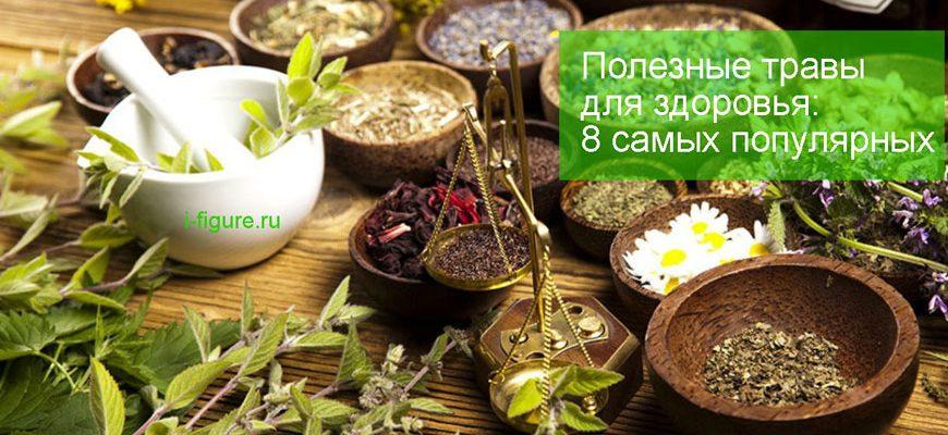 полезные травы для здоровья