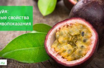 маракуйя фрукт полезные свойства и противопоказания