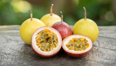 фрукт маракуйя полезные свойства и противопоказания