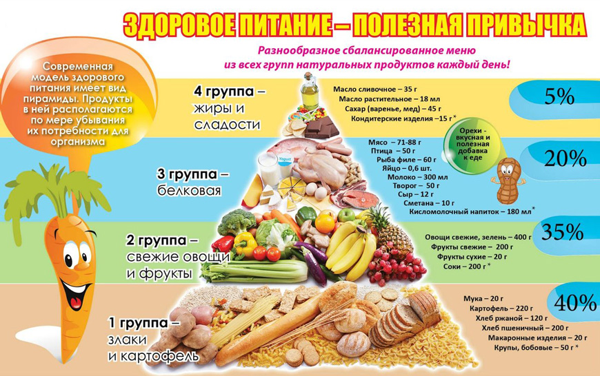 основные правила рационального здорового питания