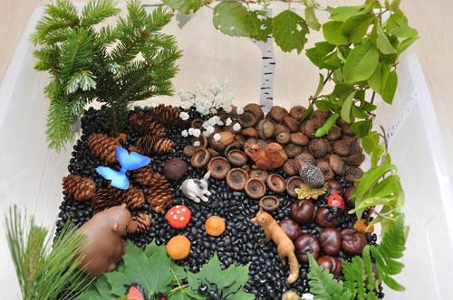 детские поделки с использованием природного материала в детском саду 5